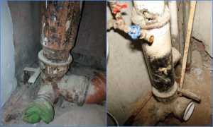 Особенности монтажа или замены стояка канализации